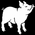 The Dividend Pig picture