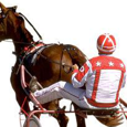 The Stock Jockey picture